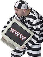 Web Crimes
