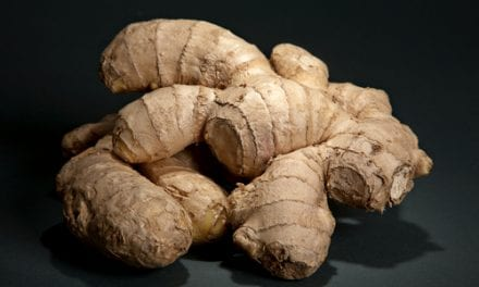 Psoriasis Breakthrough: Can a Ginger Extract Stop Inflammation?