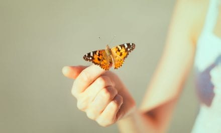 Novel Topical May Offer Hope for 'Butterfly Children'