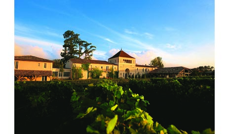 A Beautiful Vine: The Enchanted History of Château Smith Haut-Lafitte