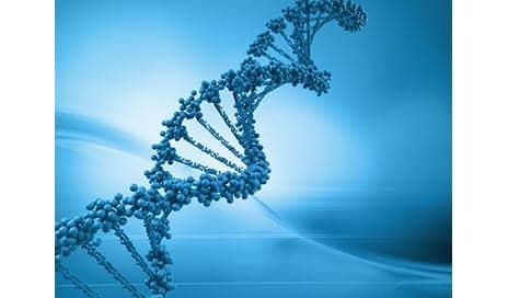 What Constitutes Good Genes?