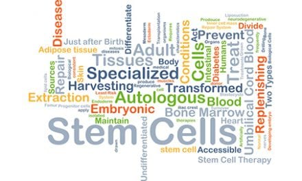 Dermatology Experts Set the Stem Cell Record Straight