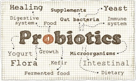 Skincare Products with Probiotics