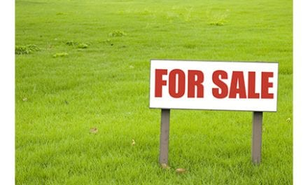 Crucial Considerations for Partnership or Sale