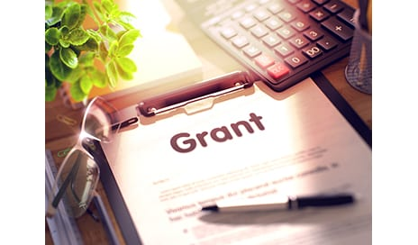 Fredric S. Brandt, MD, Fellowship Grants Awarded
