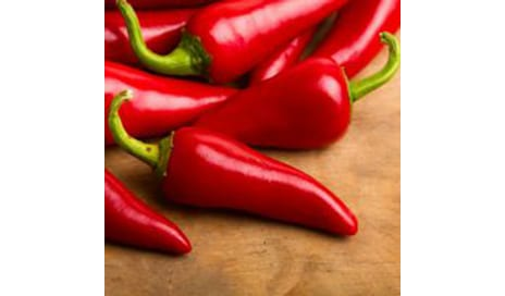 Chili Pepper Compound Curtails Breast Cancer