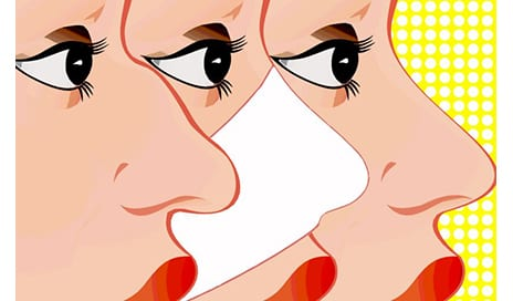 The Thousand Year History of the Nose Job