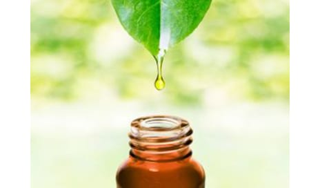 Essential Oils for Aging Skin: Preventing & Treating Wrinkles Naturally