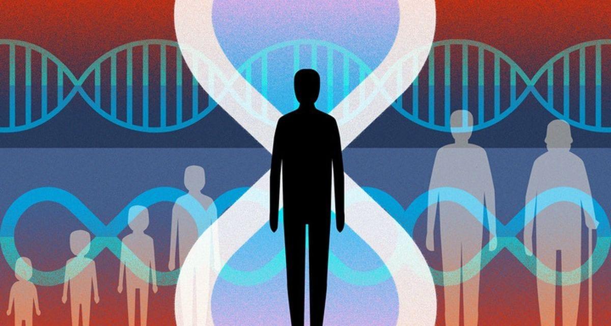 Scientists Are Waging a War Against Human Aging. But What Happens Next?
