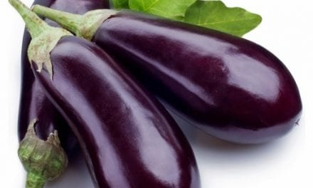 Plant Extract to Fight Skin Cancer – Eggplant Substance Has Amazing Health Benefits