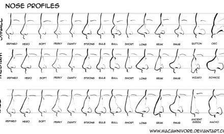Different Types of Nose and What They Mean
