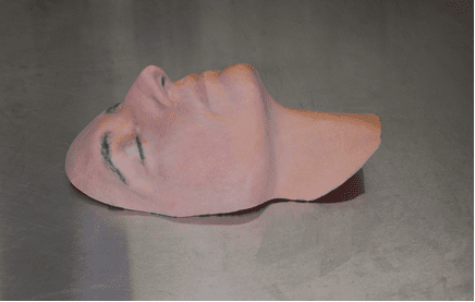 Langone Pioneers 'Death Masks' for Deceased Facial Donors