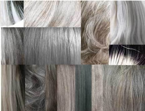 Gray Hair Linked To Immune System