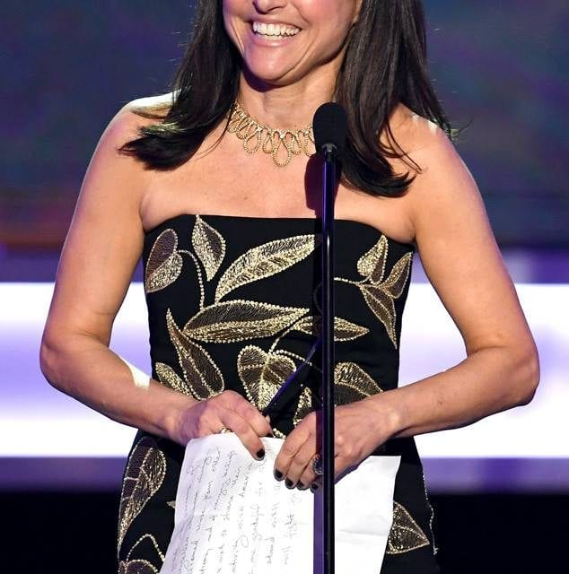"""Julia Louis-Dreyfus Has """"Come Out the Other Side"""" After Breast Cancer Battle"""