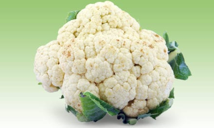 Breakthrough Procedure Could Fix Cauliflower Ears Without Surgery
