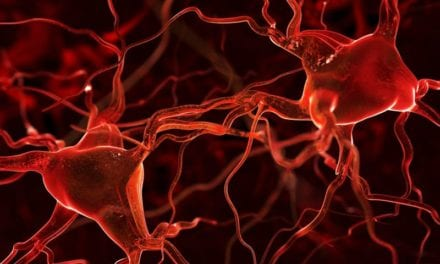 Researchers Find Way to Speed Up Nerve Regrowth for Trauma Patients