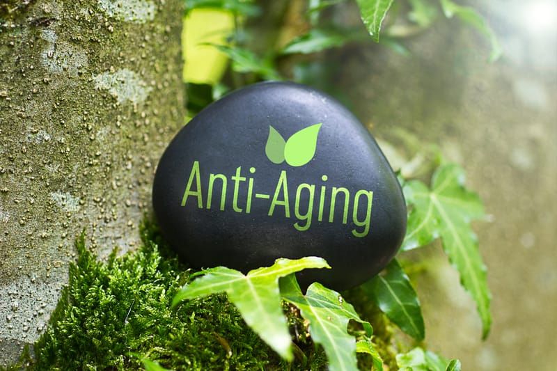 Researchers Solve Anti-aging Mystery – Identify Gene Responsible for Cellular Aging