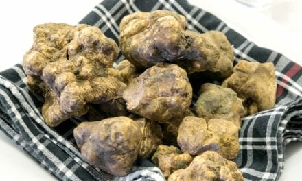 Everything You Need to Know About White Truffle, the Buzzy New Anti-Aging Ingredient